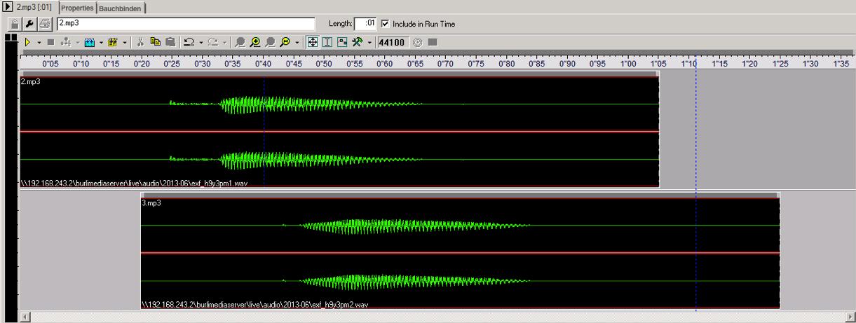 Burli Audio editor
